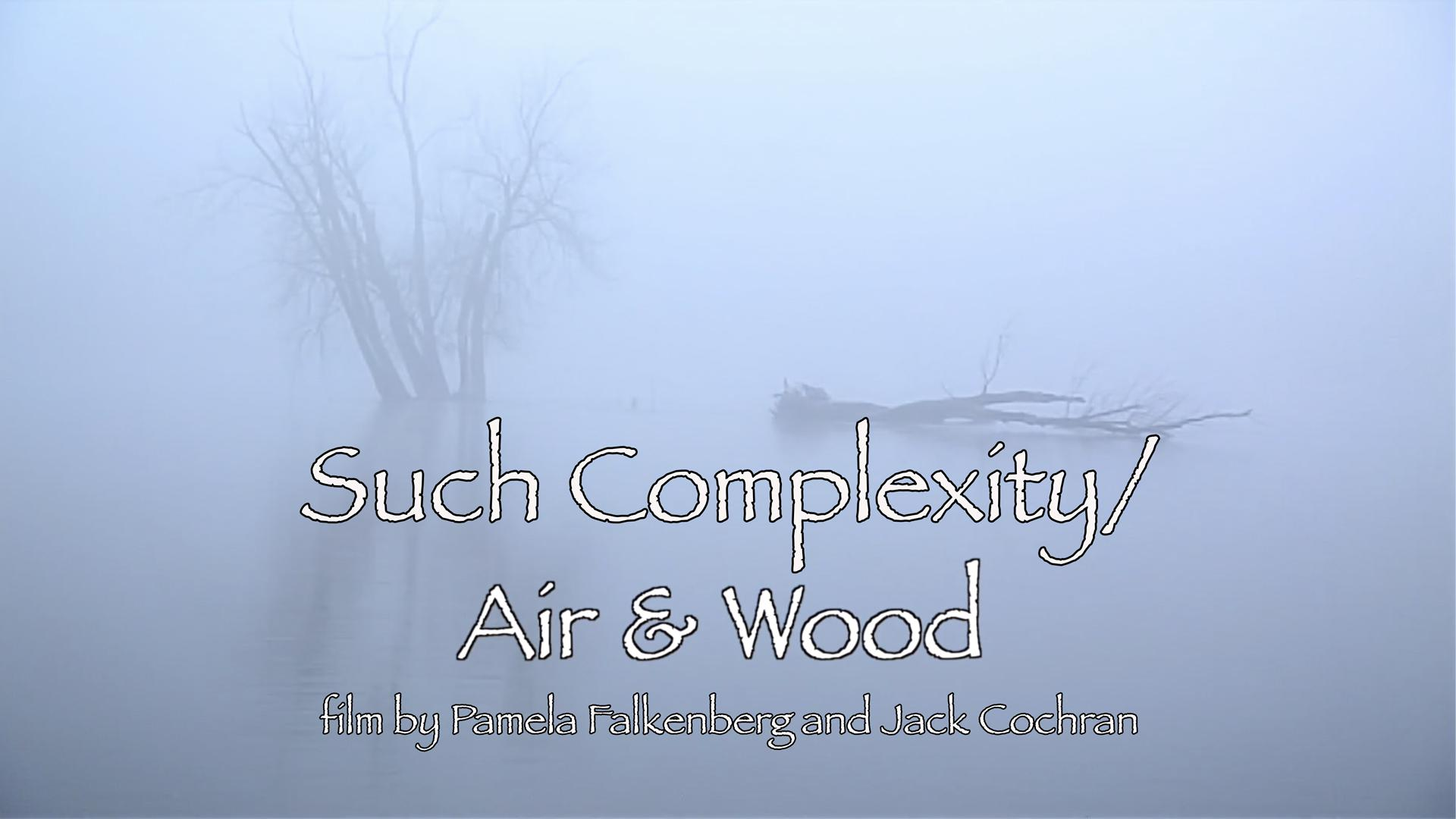Such Complexity/Air & Wood