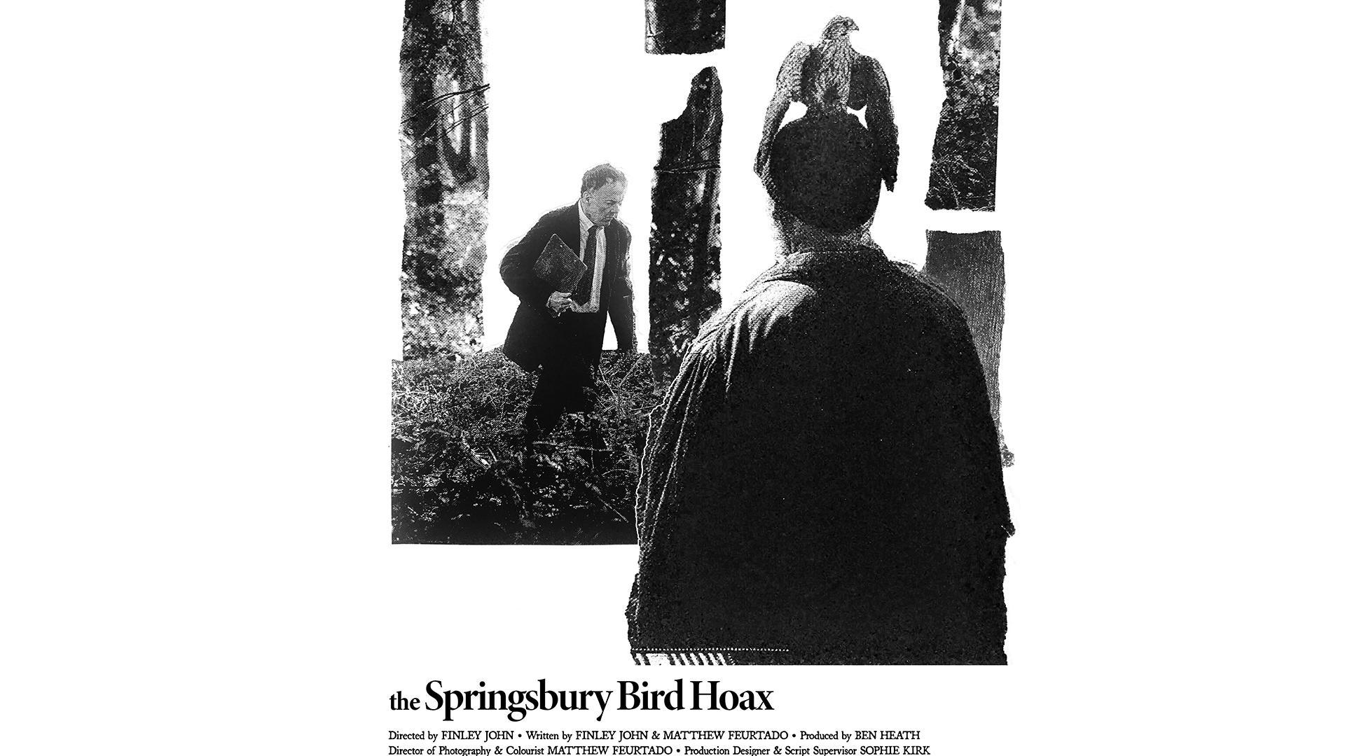 The Springsbury Bird Hoax